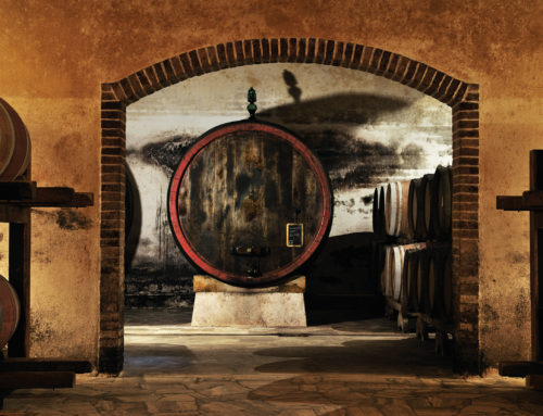 Super Tuscans: Rebel Winemakers with a Cause